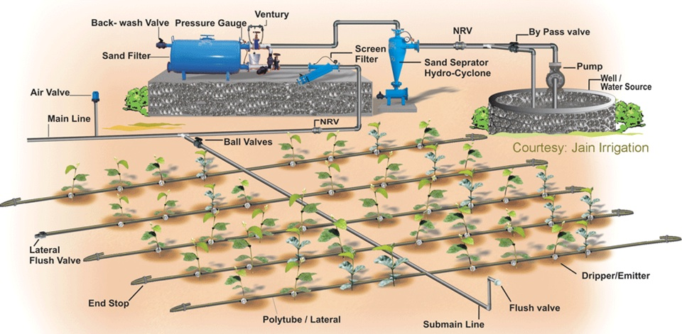 INFONET BIOVISION 2010 Commercial Drip Irrigation
